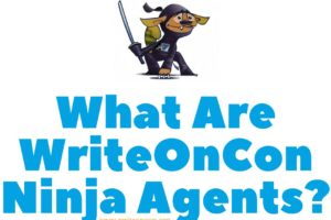 What Are WriteOnCon Ninja Agents?